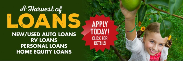 2018 fall gen loan web
